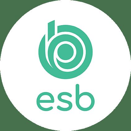 logo de l'école d'ingénieurs ESB Nantes