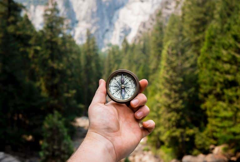 orientation post-bac reussie : main tenant une boussole devant une forêt