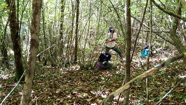 temoignages-metiers-biodiversite-forestiere