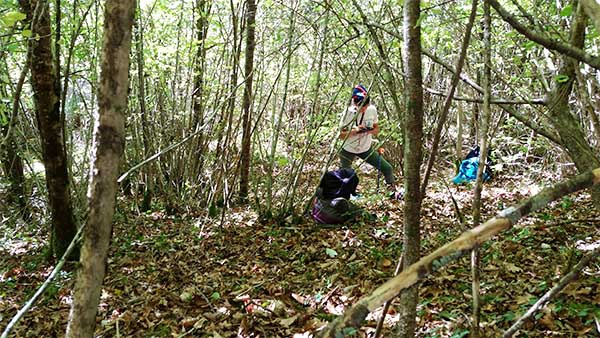 temoignages metiers biodiversite forestiere